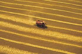 EIB and EBRD Interventions in the Arab Region in the AGRIBUSINESS Sector: A Civil Society insight